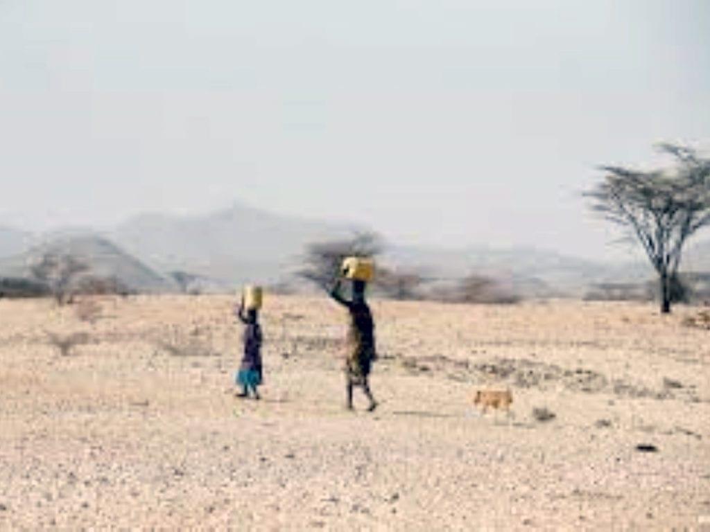 Drought in ASAL Region in Kenya