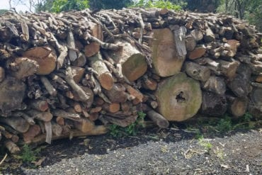 Un montón de troncos de árboles dispuestos para erigir un horno para quemar carbón