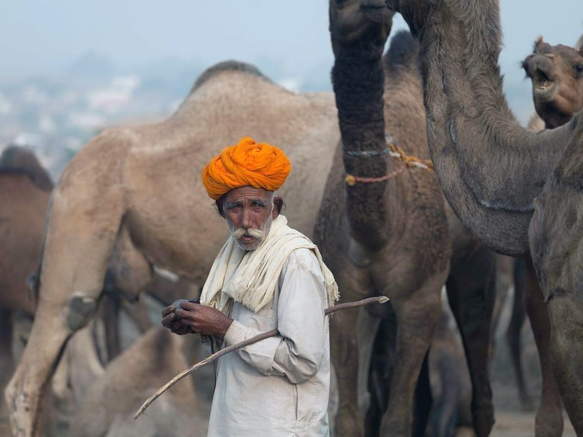 Nicolas Preci photo of a man selling camels.